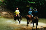 Horseback Riding and Waterfalls from Manuel Antonio