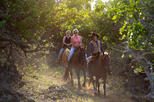 Sunset Horseback Ride