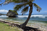 Explore and Discover Barbados Tour with Boat Cruise