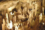 Natural Wonders of Barbados Tour including Harrison's Cave, Barbados, Nature & Wildlife