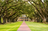 Tour of Oak Alley Plantation, New Orleans,