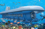 Cozumel Shore Excursion: Atlantis Submarine AdventureCozumel Shore Excursion: Atlantis Submarine ...