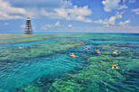 Key West Schooner Sail and Reef Snorkel with Lunch