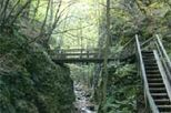 Guided Nature Walk to Johannesbach Gorge and Schrattenbach Ruins, Vienna, Hiking & Camping