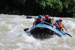 Kiulu White Water River Rafting from Kota kinabalu