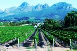 Full Day Wine Tour from Cape Town