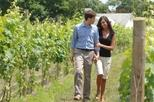 Long Island Wineries and Outlet Shopping from New York City