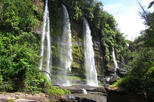 4-Day Jungle Tour to the Amazon from Bogota