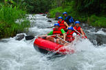 Bali White Water Rafting with Lunch-pick up and drop off