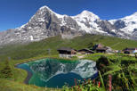 Swiss alps day trip from lucerne jungfraujoch and bernese oberland in lucerne 151319
