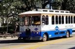 Air Conditioned Trolley History Tour of Savannah