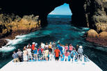 Bay of Islands Day Tour with Hole in the Rock Dolphin Cruise