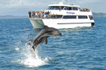 Full-day Bay of Islands, Hole in the Rock and Dolphin Cruise Tour from Auckland