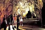 Rotorua to Auckland via Waitomo Glowworm Caves One-Way Tour, Rotorua, Day Trips