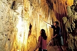 Waitomo Caves and Rotorua Day Trip from Auckland, Auckland,