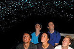 Waitomo Glowworm Caves Discovery Tour from Rotorua