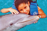 Cancun Dolphin Encounter Program, Cancun,