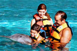 Riviera Maya Dolphin Encounter Program, Riviera Maya & the Yucatan, Swim with Dolphins
