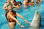 Riviera Maya Dolphin Royal Swim, Riviera Maya & the Yucatan, Swim with Dolphins