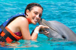 Riviera Maya Dolphin Swim Adventure, Riviera Maya & the Yucatan, Swim with Dolphins