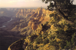 Grand Canyon South Rim Bus Tour with Optional IMAX