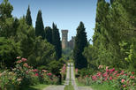 Round trip from Verona to Parco Sigurtà to Enjoy the Best Park of Italy