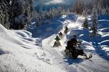 Snowmobile Experience in Tonale