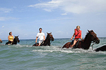 Heritage Beach Horse Ride, Ocho Rios, Nature & Wildlife