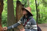 Talking Trees - Indigenous Interpretive Walk - Porpoise Bay Provincial Park