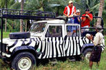 Bob Marley Jeep Safari from Ocho Rios, Ocho Rios, Literary, Art & Music Tours