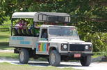 Caribbean - Jamaica: Jeep Safari Adventure Tour from Montego Bay