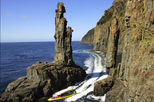Bruny Island Wilderness Coast Tour from Hobart including Lunch, Hobart, Nature & Wildlife