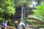 Mt Field National Park and Russell Falls from Hobart, Hobart,