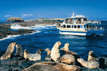 Phillip Island Nature Park and Wildlife Seals Cruise, Melbourne,
