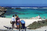 Rottnest Island Day Trip from Perth