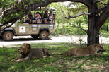 2 Days 1Night Selous Game Reserve