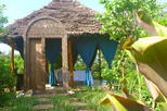Jozani Forest & Village Spa Includes Swahili Lunch