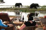 Chobe River Lunch Cruise