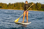 Family Private Stand Up Paddle Tours
