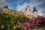 Loire Valley Chateau du Rivau and Gardens Admission Ticket with Audioguide