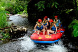 Full-Day White Water Rafting Adventure on the Telaga Waja River