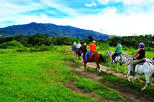 Adventure Tour at Buena Vista Lodge from Guanacaste