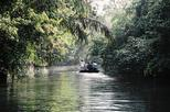 Tortuguero National Park 3-Day Tour from San Jose