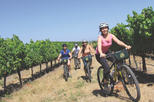 Cycling in the Vineyards Off-Road Bike Tour