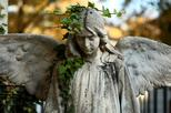 Dark secrets of Bucharest half day tour with Bellu cemetery included