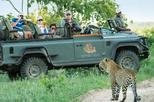 3Days LEOPARD HILLS PRIVATE GAME RESERVE SAFARIS from Johannesberg or Pretoria