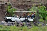 3nights-4days Madikwe River Lodge Fly In Safari Package-Madikwe Game Reserve