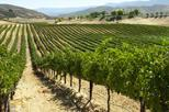 Napa and Sonoma PRIVATE GROUP Tour