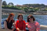 Custom boat tour: Discover the coastline from 1 Hr on a solar powered boat