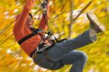 Small Group Northern Berkshires Zip Line Canopy Tour
